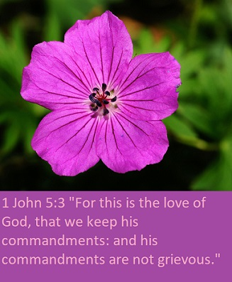 "1 John 5:3 ""For this is the love of God, that we keep his commandments: and his commandments are not grievous."""