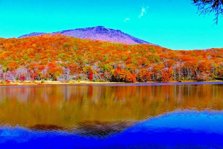 紅葉の古池はハイカーに絶大な人気があり、現在は黒姫山の登山コースにもなっています