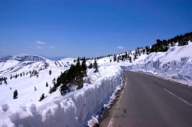 春の開通直後の渋峠はこんな雪の壁が!