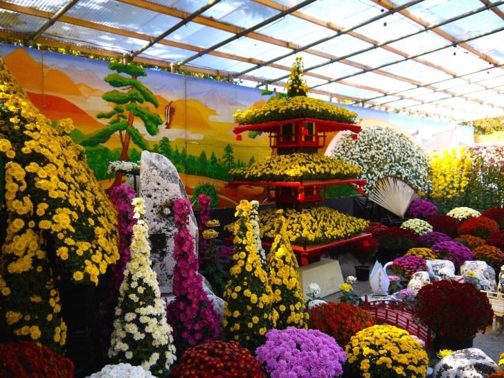 須坂の秋を彩る恒例イベントの『信州須坂大菊花展』