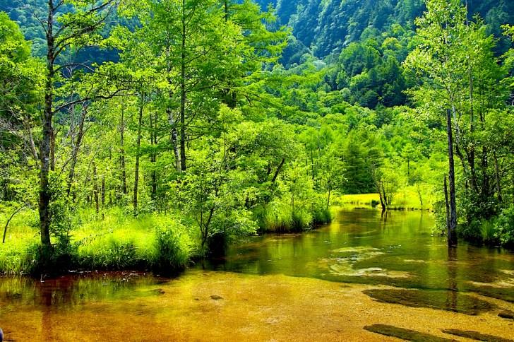 新緑の田代池はまさに爽快で絶景!