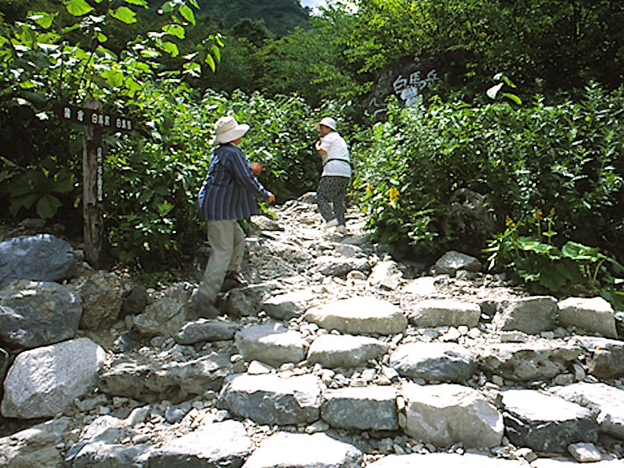 白馬大雪渓遊歩道