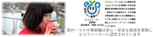 エコファーマー|長野県産りんご|マルサ果樹園|減農薬|