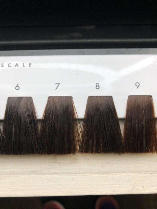 6〜9トーンのヘアカラーのレベルスケール