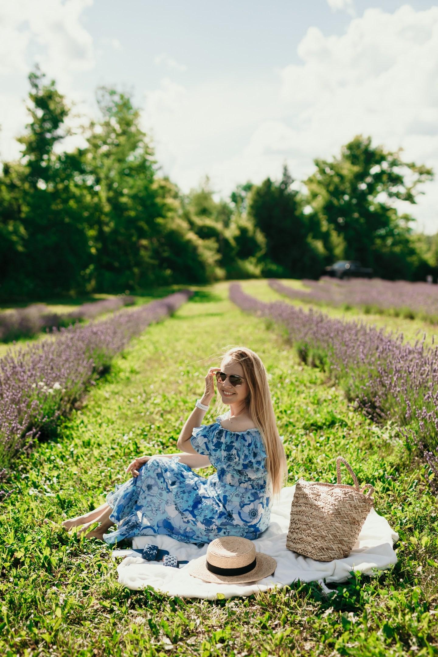 An Afternoon Trip To Terre Bleu Lavender Farm