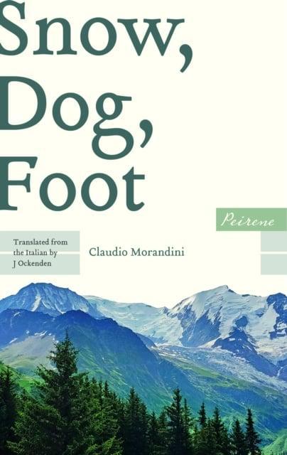Snow, Dog, Foot by Claudio Morandini – Shiny New Books
