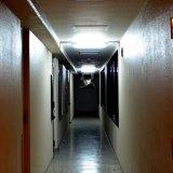 廊下と仮面