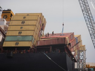 http://www.wdrep.com/_wp/environment/new-zealand-shows-us-how-with-the-rena-disaster-great-numbers-of-wildlife-saved-oil-successfully-off-loaded-cargo-containers-now-being-removed