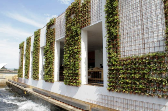 Shipping Container Conversions In Australia Greenhouse