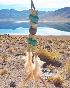 Lagunas Altiplánicas - Miscanti