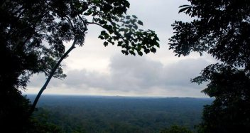 Mirador Trail. Shiripuno's best trail to watch the forest of the Yasuni Biosphere Reserve in Ecuador.