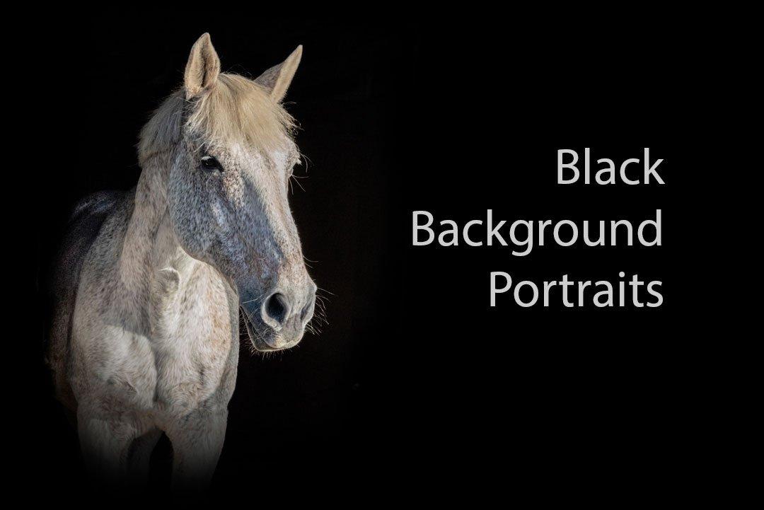 Black background portraits