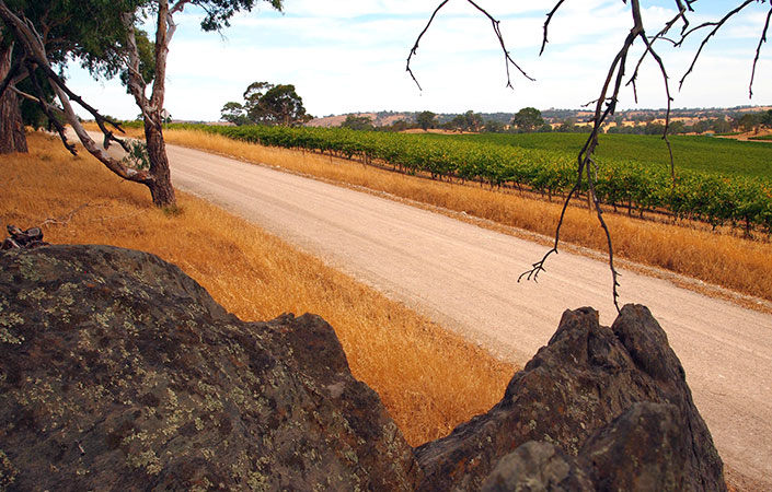 region-barossa-main-3