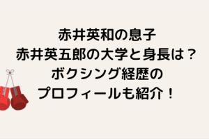 赤井英和の息子・赤井英五郎の大学と身長は?ボクシング経歴のプロフィールも紹介!