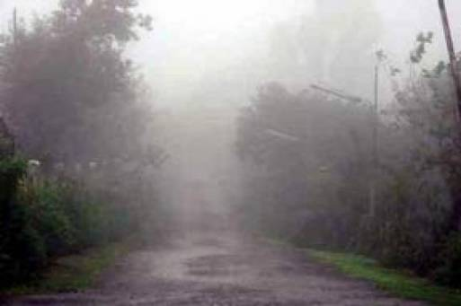 rain-thunderstorm-with-isolated-heavy-falls-expected-1469623711-34491