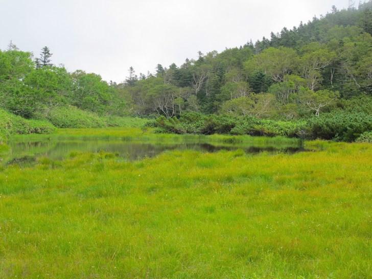 羅臼湖歩道・二の沼