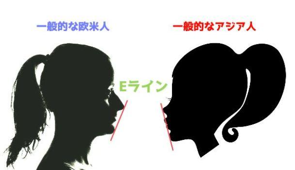 欧米人とアジア人のEライン比較写真