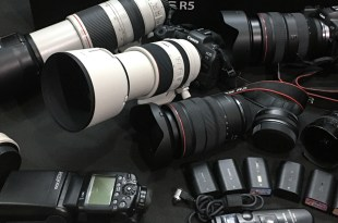Shirley 老師 ~ 【Canon EOS R5 】RF 原生鏡頭與 EF 鏡頭的選擇運用 & R5 重要下載連結