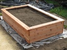 Building Planter Box And Planting Fruits Veggies