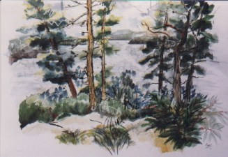 Pinecrest, Wolfe Lake, 22 x 30 in, watercolour and ink