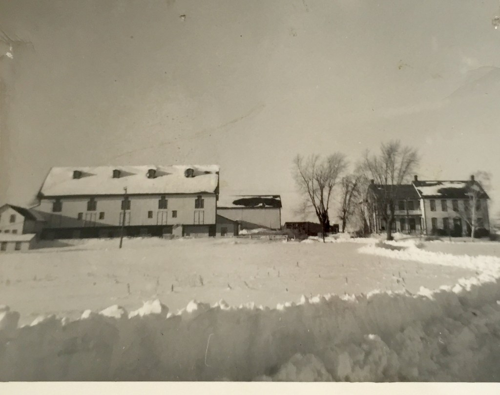 Spahr Farm after the snow fell and wind died down, 1958