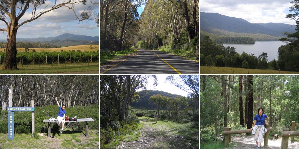 The Beautiful Yarra Ranges & Marysville Region Before the Bushfire