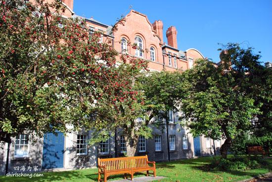 都柏林大学校园内