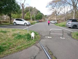 南中山公園の駐車場