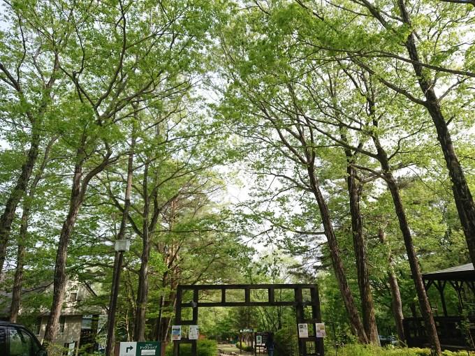 ホテルフォレストヒルズ那須への入り口