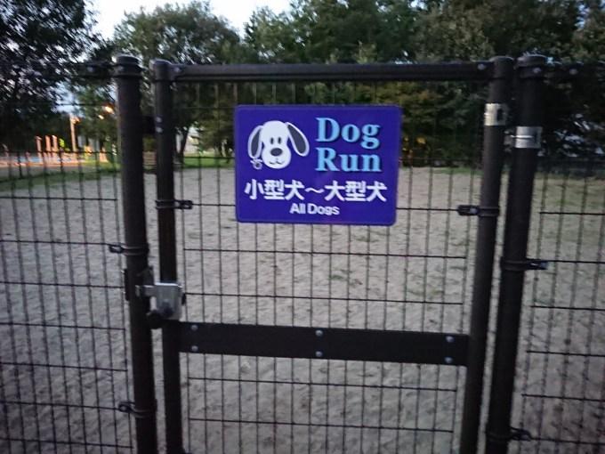 小型犬~大型犬フィールド