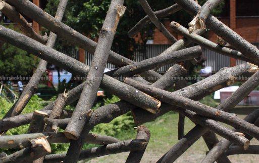 www.shirshakbaniya.wordpress.com_2242 copy