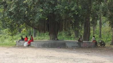 chapur.shirshakbaniya.wordpress.com_20150518_1276