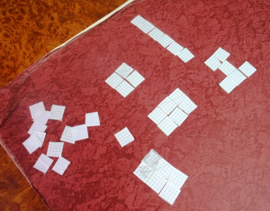 the girls cut up pieces of graph paper in 1 cm squares and used them to create areas of different sizes and shapes/