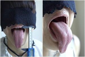 舌モデルの超絶長舌