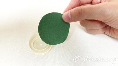 くるみボタン 2