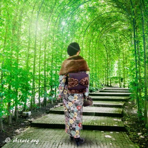 s-緑トンネルと洋服地の着物コーデ