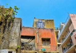 Shahpur Jat 8