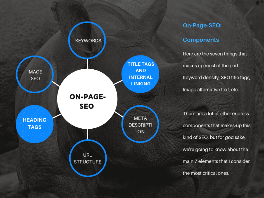 Components of on page SEO.