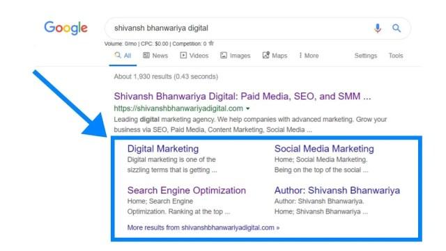 riya Digital Google Brand Signals.