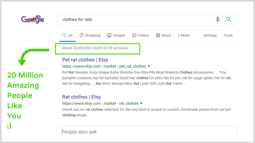 How to successfully start a blog: searching for 'clothes for rats'.