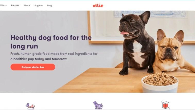 Best Dog Affiliate Programs: Ollie