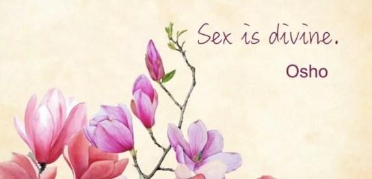 sexisdivine-magnolia.001
