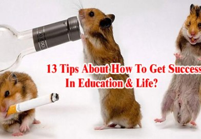 13 Tips About How To Get Success In Education & Life?