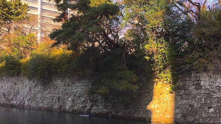 駿府城三ノ丸堀