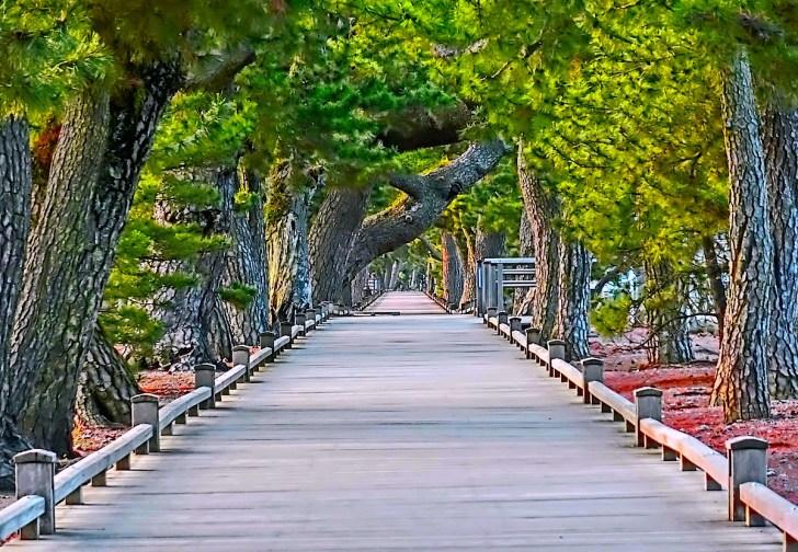 伯良神社と羽車神社を結ぶ「神の道」
