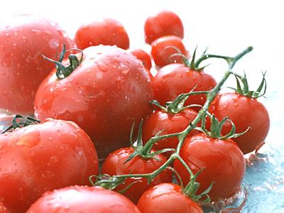 tomato-midi