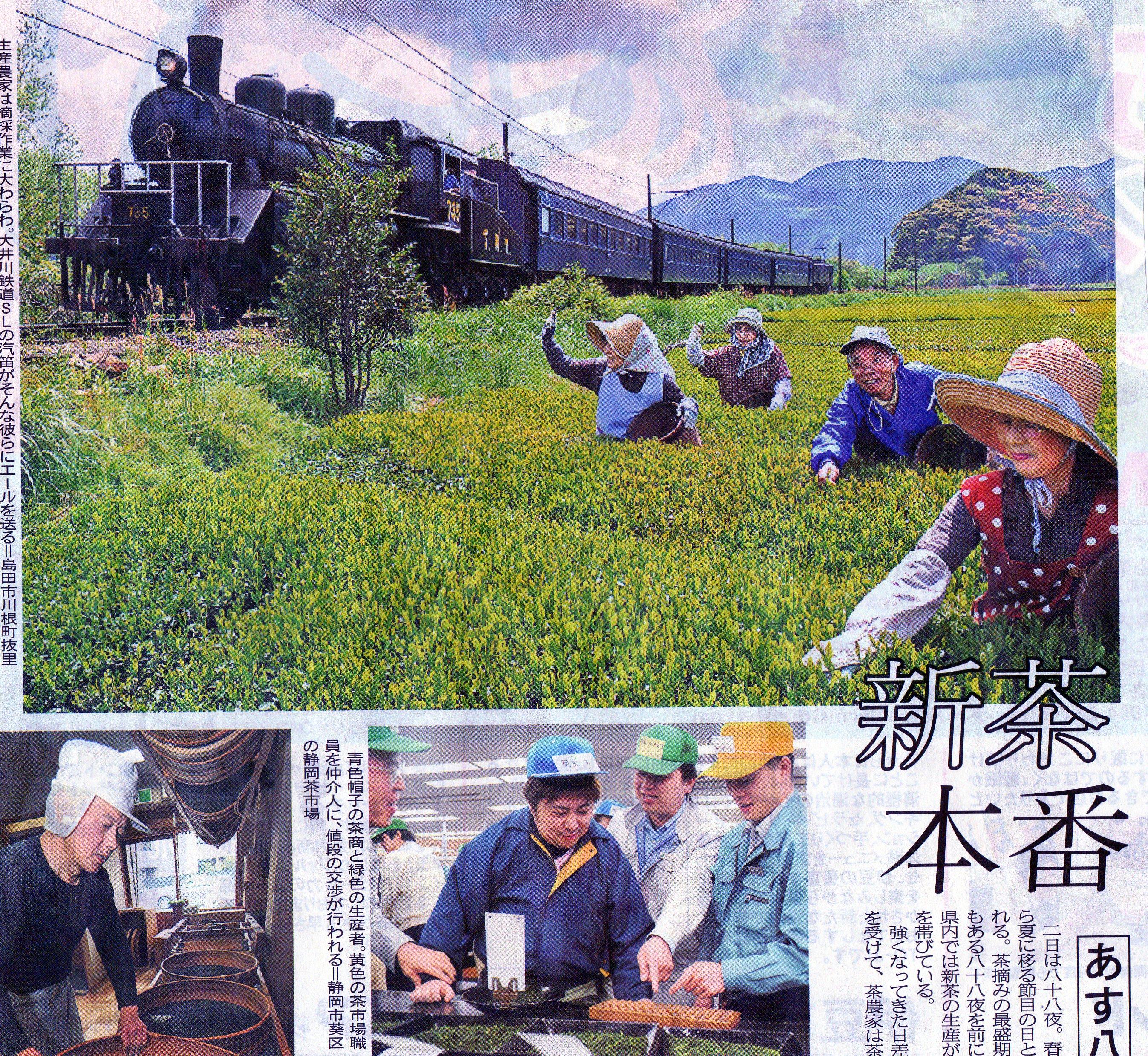 tea-shimbun