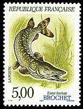 TIMBRES-GASTRONOMIE-POISSONS-Brochet