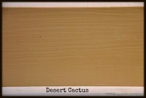 desertcactus #americanpaintcompany #colors #shizzledesign