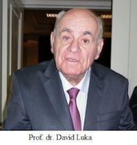 Prof. Dr. David Luka